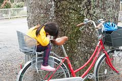 Nap (Wunkai) Tags: mitoshi ibarakiken japan     ziyiwang bicycle treetrunk