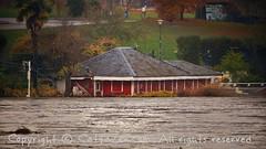 Torino (39) (cattazen.com) Tags: alluvione torino po esondazione parcodelvalentino murazzi pienadelpo cittditorino turin piemonte