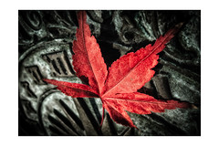 Autumn Time (v.ph.j. (busy)) Tags: herbst autumn red rot sundial sonnenuhr fujix20 niksoftware colorefexpro leaf blatt