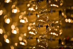 DSC_6552 (Christian Dionne) Tags: toronto afs nikkor nikon 105mm 14 d800 bokeh sharp sharpness test lens ontario canada nordstrom christmas decoration