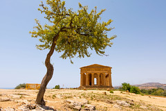 584228846 (Voyages Lambert) Tags: templeofconcord history famousplace architecture agrigento sicily europe summer valley