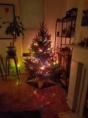 2016 Christmas Tree (Uncle Catherine) Tags: christmas xmas christmas2016 holidays decorations home apt williamsburg brooklyn christmastree