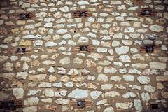 hive. (A.Ayuso) Tags: calle callejeros candid chinchn espaa nikon streetphotography streetshoot spain strasse strase street urbana walking hive palomas pigeons