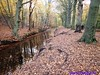 """2016-11-19 Wassenaar RS80 Tocht 25 Km • <a style=""""font-size:0.8em;"""" href=""""http://www.flickr.com/photos/118469228@N03/31463267005/"""" target=""""_blank"""">View on Flickr</a>"""