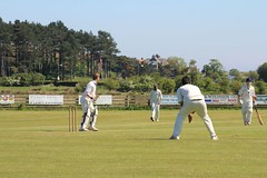 IMG_3211 (rhandyside) Tags: cricket alnmouth