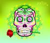 Psycho Skull (Fractalila Creative) Tags: fieradeidad fierce productions fierawolfi axios art psicodélico colores illustrator calavera vectorial link zelada fractalila creative