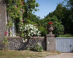 Charleston summer garden (penwren) Tags: roses summer house wall garden sussex charleston artists bloomsbury borders vanessabell firle duncangrant