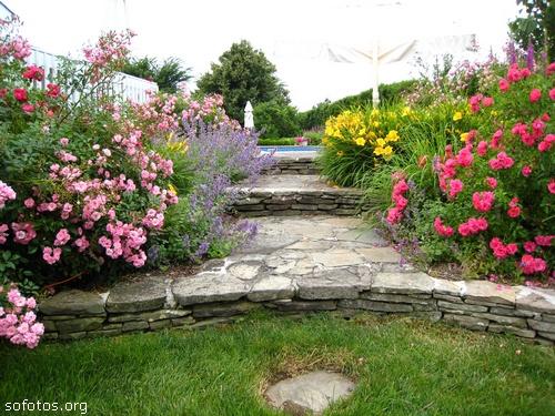 Paisagismo e jardinagem flores ornamentais