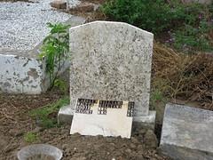 Williams stone