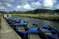Salperwick, marais audomarois, bacves (Ytierny) Tags: france horizontal canal berge marais salperwick excursion visite barque tourisme pasdecalais stomer embarcation audomarois bacve ytierny