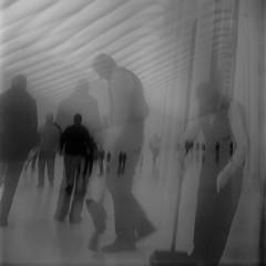 (Barry Yanowitz) Tags: nyc newyorkcity blackandwhite bw ny newyork 6x6 film mediumformat blackwhite downtown kodak manhattan trix 120film d76 calatrava scanned brownie filmcamera worldfinancialcenter nycity selfdeveloped kodaktrix400 kodakbrowniehawkeyeflash selfdeveloping calatravawalkway d76developer