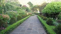 (sftrajan) Tags: garden guatemala paseo botanicgarden pathway centralamerica panajachel jardínbotánico jardinbotanique hotelatitlanbotanicgarden