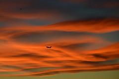 Solnedgang / Sunset, OSL ENGM Gardermoen (Inger Bjørndal Foss) Tags: sunset norway airplane osl gardermoen
