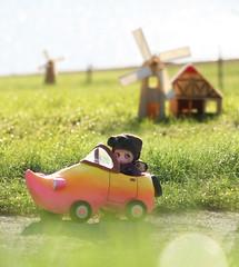 The Dutch Clogmobile