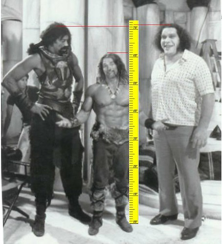 Giant gonzalez and andre the giant