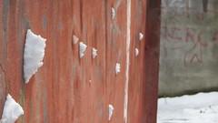 Snow War (AbYaSSer6) Tags: snow turkey istanbul snowing