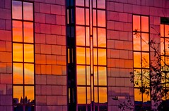 Cologne sunset windows (Zed.Cat) Tags: windows sunset reflection building colors reflections colours cologne koln pinks