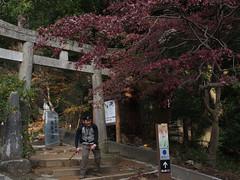 PC230118.jpg () Tags: jp  tsukuba ibarakiken