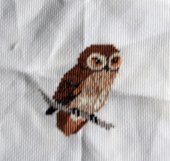 owl (SerenielaCrafts) Tags: crossstitch embroidery crafts craft owl tapestry