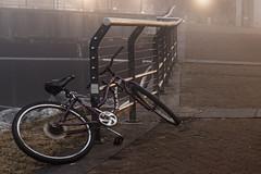 risky business (Mr. Greenjeans) Tags: mist bicycle misty fog neworleans handrail nola riverwalk foggymorning gaylonkeeling
