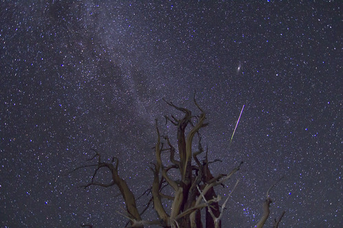 "A Perseid Meteor with Andromeda • <a style=""font-size:0.8em;"" href=""http://www.flickr.com/photos/91171539@N08/11943592176/"" target=""_blank"">View on Flickr</a>"