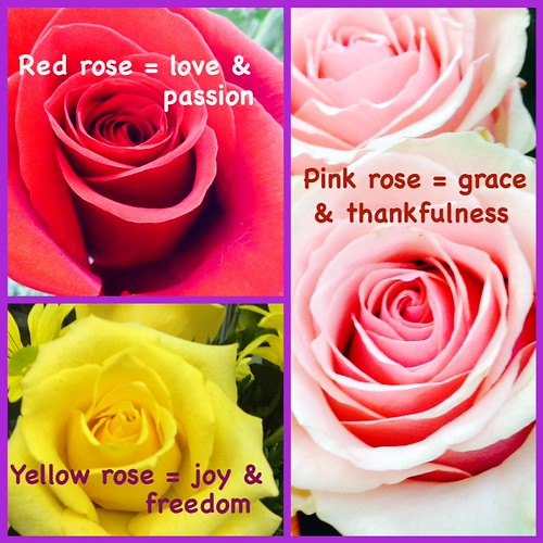 Rose Color Meanings - Lafayette Florist & Greenhouses in Lafayette, Colo.