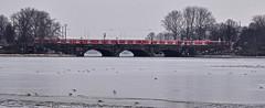 Alster im Winter (cmdpirx) Tags: winter ice river germany hamburg db sbahn brcke fluss alster eis lombards