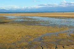 Tinline Bay (Toni Escuder) Tags: ocean sea newzealand beach water forest abeltasman abeltasmannationalpark nuevazelanda tinlinebay