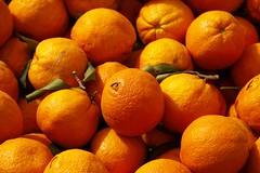 Accueil - Welcome (Larch) Tags: orange fruit thankyou merci greece crete welcome bienvenue grèce iraklio autofocus kriti crète héraklion κρήτη ελλάδα thegalaxy ευχαριστώ highqualityimages photographyforrecreation rememberthatmomentlevel1 infinitexposure