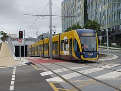 GCR_06_14 (Stephen Lindburg) Tags: lightrail trams goldcoast rapidtransit