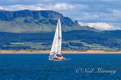 Derry~Londonderry~Doire Clipper with Binevenagh in the background. (MNM Photography 2014) Tags: londonderry clipper derry greencastle doire binevenagh clipperroundtheworldrace legenderrymaritimefestival derry~londonderry~doireclipper legenderrymaritimefestivalracestart