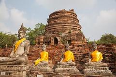 Ayutthaya - Wat Chaya Mongkhon (Rolandito.) Tags: park statue thailand asia buddha south statues east historical southeast vat wat chaya buddhas ayutthaya mongkhon chayamongkhon