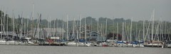 Maryland. Yacht Club. Marina on a misty day. (Traveling with Simone) Tags: marina boats outdoor maryland potomac masts eastcoast yachtclub yats sonydsc