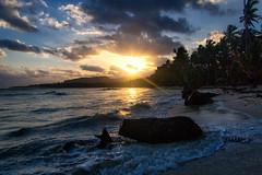 Las Galeras sunrise (Beau Finley) Tags: beaufinley republicadominicana dominicanrepublic color nature beach sunrise lasgaleras dr rd canon canonrebel rebel xs rebelxs nikcollection lightroom ocean shore flotsam jetsam