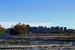 A look towards Ottawa along the Ottawa River in Hull (Gatineau), Qubec (Ullysses) Tags: hull gatineau qubec autumn automne ottawariver riviredesoutaouais ottawa ontario skyline