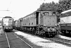 FS E 428.081 + E 428.240 Dep. MI Greco Pirelli 06/08/1977. Foto Roberto Trionfini (stefano.trionfini) Tags: train treni bahn zug fs e428 milano lombardia italia italy