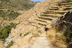 DSC06519a (I.H.Snaps) Tags: greece andros ormos korthiou