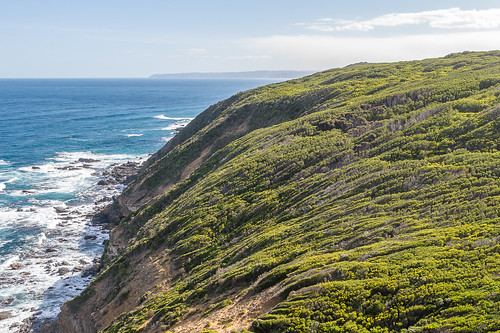 Cape Otway from the lighthouse