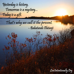 quote-liveintentionally-yesterday-is-history-tomorrow-is (pdstein007) Tags: quote inspiration inspirationalquote carpediem liveintentionally