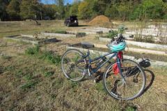 IMG_0872 (hammonton_garden) Tags: 2016 communitygarden fall hammonton southjersey nj gardenstate