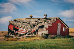 The Rise And Fall Of Big Red (Pedalhead'71) Tags: thornton washington abandoned palouse barn red
