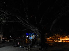 OMKAR HILLS TEMPLE PHOTOS-SET-1-PHOTOGRAPHY BY CHINMAYA RAO ON MAHASHIVARATRI-2016 (21)