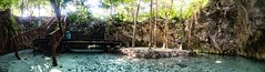 Grand Cenote (armand.gerstenberger) Tags: ifttt 500px grand cenote mexico quintana roo tulum limestone panarama blue cyan water underground vacation d810 armand gerstenberger