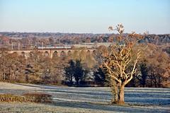 Frozen (whosoever2) Tags: crosscountry arriva voyager northrode viaduct cheshire congleton frost frozen cold winter sunshine nikon d7100 november 2016 train railway railroad england unitedkingdom uk gb greatbritain