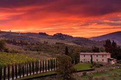 Fiery Sunrise (Erik Pronske) Tags: agriculture morning tuscany panzanoinchianti wine trees sunrise italy leadinglines hills landscape clouds chianti