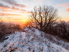 Sunset on Vysoka Peak (martinvaculk) Tags: malkarpaty smallcarpathians blue clouds grass magic mountains orange sky snow sunset trees winter kuchya bratislavaregion slovakia sk