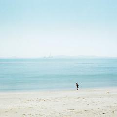 Sea breeze (TAT_hase!) Tags: hasselblad 503cxi carlzeiss planar c 80mm film kodak portra 160 shinojima