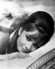 Audrey-Hepburn-Portrait-Everything Audrey (34) (EverythingAudrey) Tags: audreyhepburn audrey hepburn