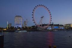 London 09 (timothy_de) Tags: london england londonnight londonskyline londoneye countyhall