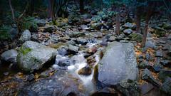 Bridal Veil Creek (J*Phillips) Tags: california creek landscape yosemite forest nationalpark mountains water backgrounds drama
